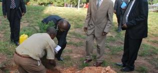ICT Minister Hon. Ham Muliira plats a tree marking the launch, flanked by Vice Chancellor Prof. Luboobi and Hon. Gabriel Opio on 28th January 2009, Makerere University, Kampala Uganda